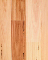 Blackbutt Timber Flooring - Compact Wood Floor Range