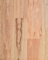 Spotted Gum Timber Flooring - Compact Wood Floor Range